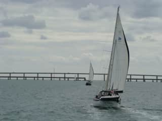 Getting ready to sail Jezabel (The boat vs. Jezabel, the dog) under the 7 mile bridge, Marathon, FL