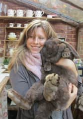 Looking after 11 bunnies in England, 2010