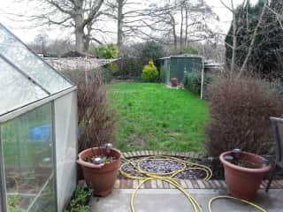 View of garden from back door.