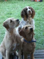 Oetje (in the back) with her friend Harry (left) and our guest Kaatje waiting