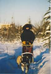 Jane dog sledding in Alaska, where I also minded a large dog