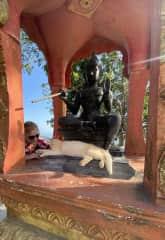 A sweet kitty at the Big Buddha in Phuket