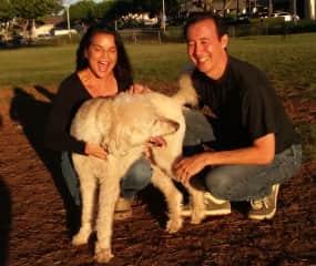 Matt and Cheri laughing with Bogart at sunset in Hawaii Kai.