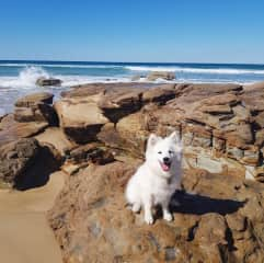 Loves outings to beaches and cafes