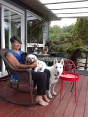 Cuddles with Maxell, Henry & Alaska - Grimsby Beach sit
