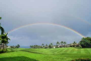 Rainbow in backyard