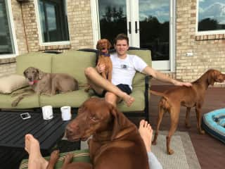 Mitko with one of our favorite dog-sitting clients!