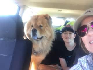 Amanda, Finn and Bear