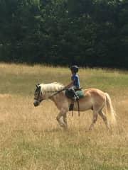Thomas equestrian