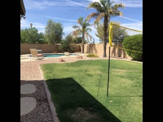 Large grass area for dogs and games.