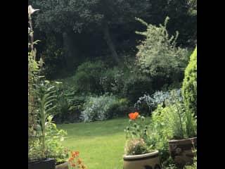 View from veranda June 2021