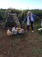 Tricia and chooks in New Zealand