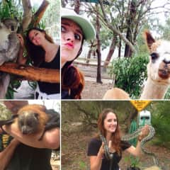 Studying australian wildlife during my tour guiding course