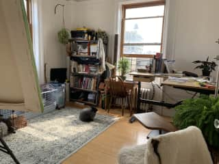 """Our """"studio,"""" with desk, easel, and -- bunnies!"""