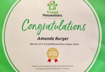 super sitter award
