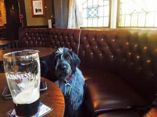 Dog-sitting Isla in Scotland. She dragged me into  pub.