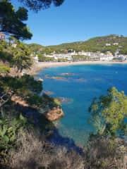 Llafranc bay