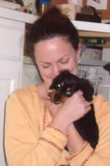 """Baby Dachsund """"Niles"""". He preceded """"Andy"""" only by years but not greatness!"""