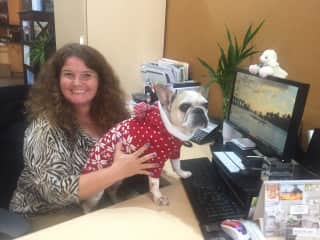 Here I am at work with our office dog!