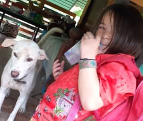 Cola is a rescued Thai street dog we adopted from DRT (dog rescue Thailand). She is loving and playful, but needs a firm hand when other dogs are around.
