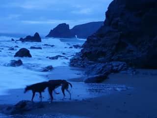 Dusky dander on a stormy, starry, moonlit evening.