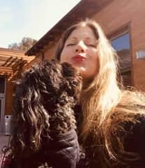 Boo bear in Laguna Beach Ca… giving me a big kiss