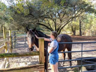 We loved caring for this wonderful thoroughbred horse