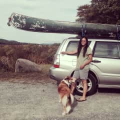 Living the outdoor life with Seneca the English Shepherd