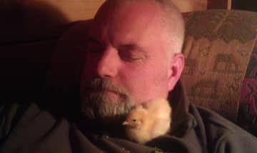 Baby chick w/John