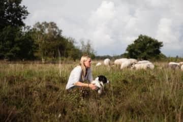Martina, sheep and Moss