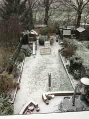 Garden in winter brrrr