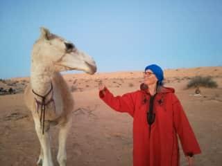 12 days walking in Sahara