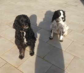 Ike on the left and his mum Dolly