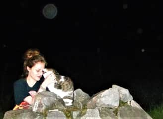 a magical cat encounter in the wild I had just before leaving Germany