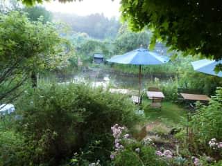 gardening/ our garden