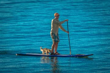 Andrew and Lefty out for a SUP.