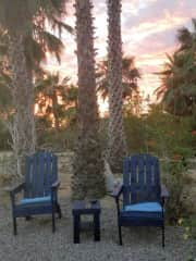 Sit back and relax under the palms