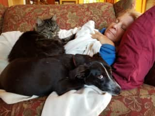 Karen cuddling with my cat and dog