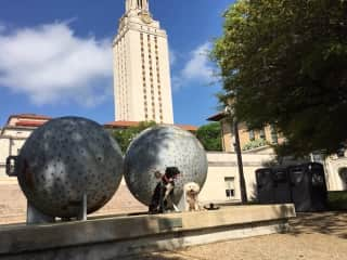 Ralph and Chloe on Univ of Texas campus - in an iconic image with the Tower (yes, that tower) and a sculpture.