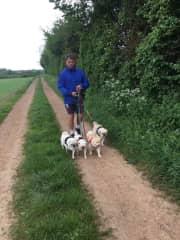 Afternoon walk in Warwickshire