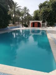 The compound pool