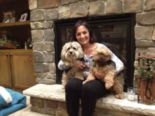 Jenny with our Yorkie and long-term dog sit Yorkie Eddie at our house.  His owner travels a great deal for business