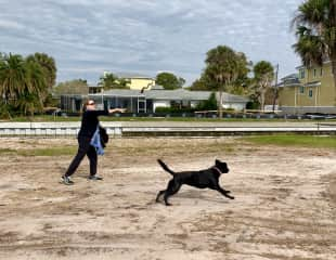 Tracey and Maude, Sarasota, Florida