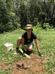 Planting native trees in Kuranda