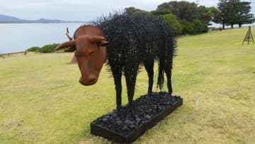 Sculpture By The Sea Festival, Bermagui