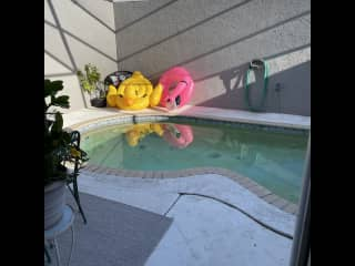 Private pool with enclosed wall around