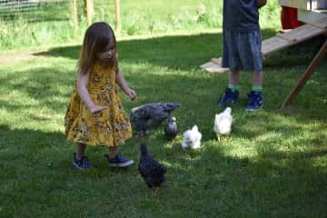 Grandchildren and Easter chicks