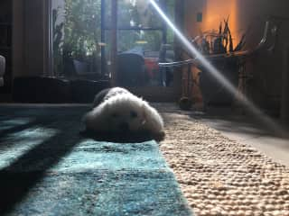 She loves sitting in the sun