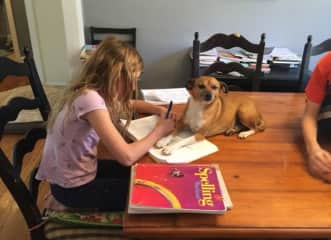 Anna homeschooling with our dog Bones :)