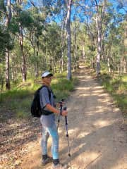 Out walking in the Nerang State Forest.